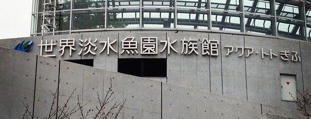 アクア・トト ぎふ 岐阜県世界淡水魚園水族館 is one of Kazuaki : понравившиеся места.