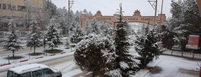 Döğer Belediyesi is one of Orte, die Ekrem gefallen.