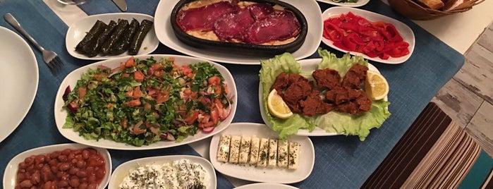Altın Mercan Balık Restaurant is one of balikci.