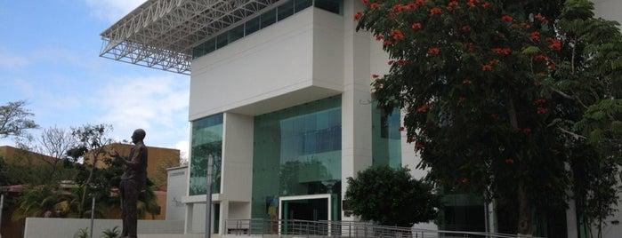Museo Regional de Antropología Carlos Pellicer Camara is one of Tempat yang Disukai Joaquin.