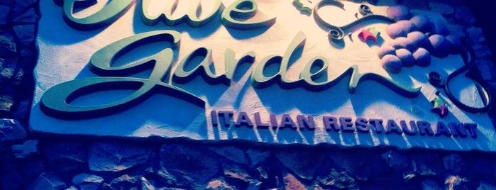 Olive Garden is one of สถานที่ที่ Rosalia ถูกใจ.
