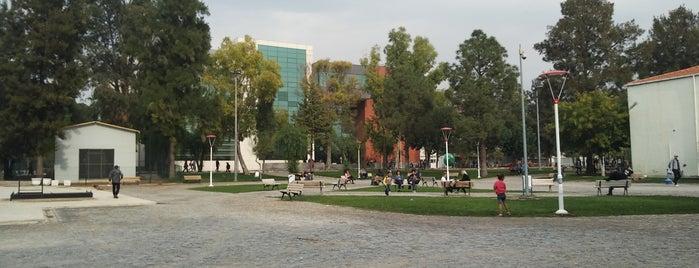 Ege Üniversitesi Diş Hastanesi is one of Cem Yılmaz 님이 저장한 장소.