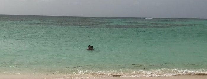 Anegada Beach Club is one of Lieux sauvegardés par Brent.