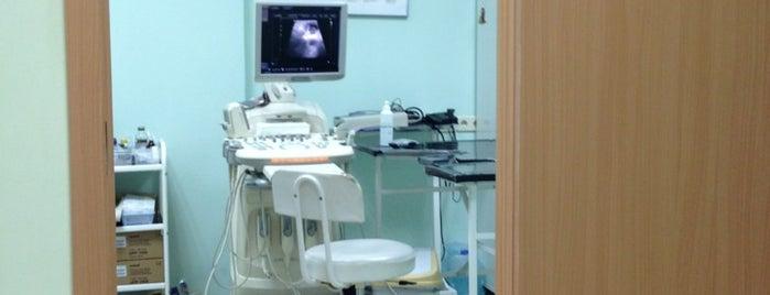 Ветеринарный центр хирургии, онкологии и терапии доктора Воронцова is one of Lieux qui ont plu à Александр.