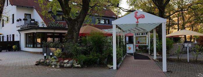Roter Hahn is one of Essen / Trinken Hessen.