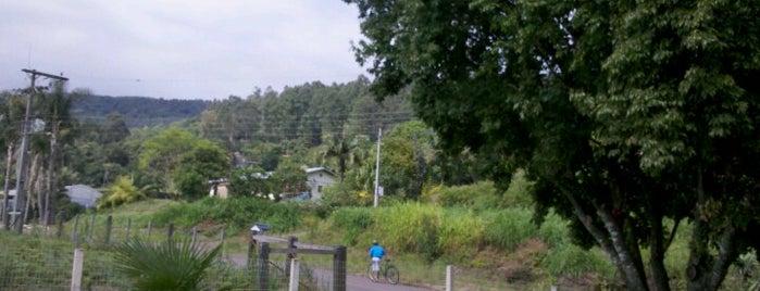 Tupandi is one of Cidades do Rio Grande do Sul.