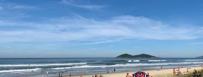Praia do Novo Campeche is one of Floripa.