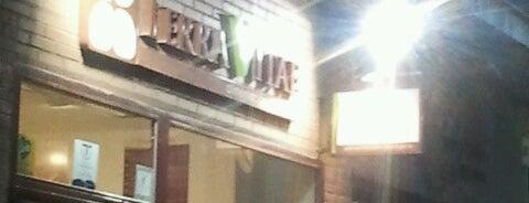 Terra Vitae is one of Tiendas con Vinos de Madrid.
