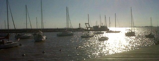Puerto de Yates is one of Lugares favoritos de Nydia.