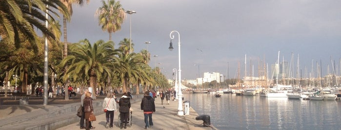 Puente Passeig De Colom is one of Begoña'nın Beğendiği Mekanlar.