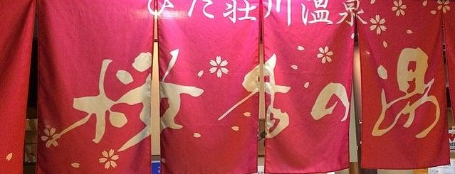 ひだ荘川温泉 桜香の湯 is one of 訪れた温泉施設.
