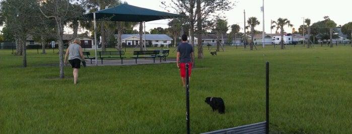 Apollo Beach Dog Park is one of Gespeicherte Orte von Crystal.