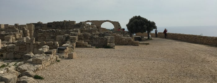 Kourion Archeological Site is one of Аленаさんのお気に入りスポット.