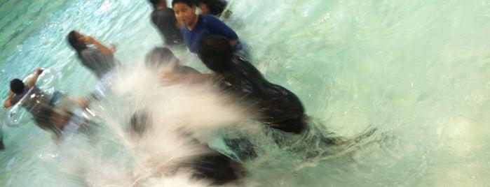 Kiwanis Wave pool is one of Virginia: сохраненные места.