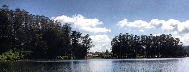 Laguna Grande San Pedro is one of สถานที่ที่ Luis ถูกใจ.
