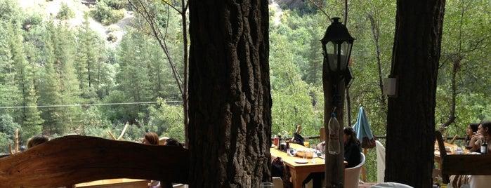 Restaurant La Tribu is one of Paola 님이 좋아한 장소.