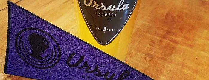 Ursula Brewery is one of Orte, die Ryan gefallen.