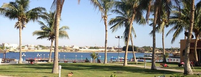 Sun Beach is one of Lugares favoritos de Samaher.