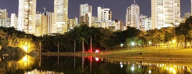 Parque Vaca Brava is one of Diversos.