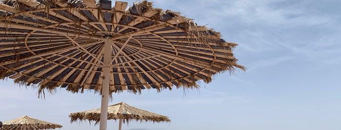 Hilton Taba beach is one of Tanya'nın Kaydettiği Mekanlar.