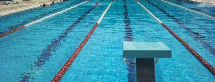 Yeni Karaman Yarı Olimpik Yüzme Havuzu is one of Tempat yang Disukai Semiha.