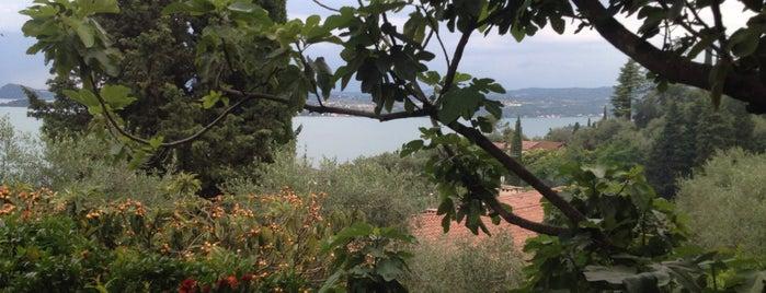 Trattoria Riolett is one of Cinziulli: сохраненные места.
