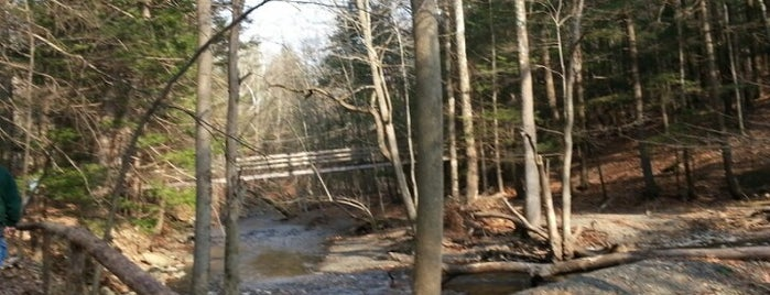 Black Creek Preserve is one of When in White Plains....