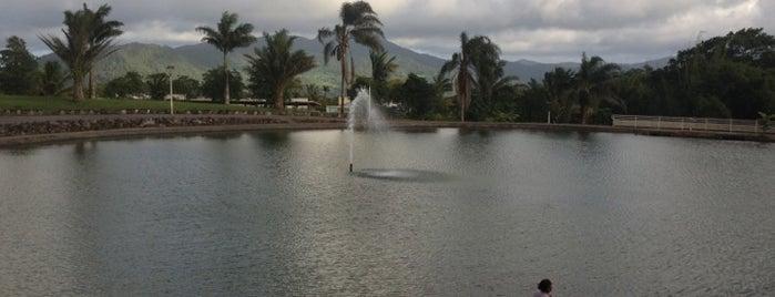 Cap 21 is one of Rivières, étangs, cours d'eau de Martinique.