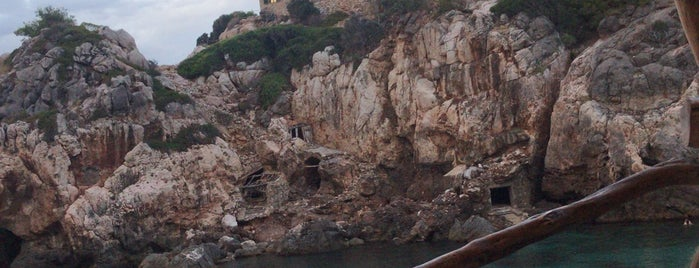 Cas Patro is one of Mallorca.