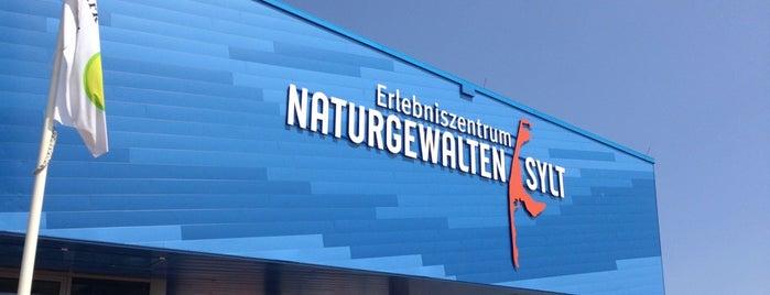 Erlebniszentrum Naturgewalten is one of Joud's Liked Places.