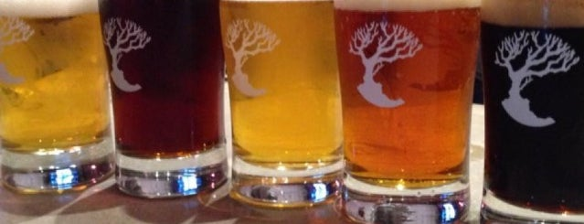 MadTree Brewing is one of America's Best Breweries.