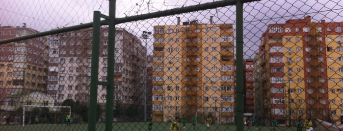 Altinova Spor Kulubu is one of Locais curtidos por Colorful.