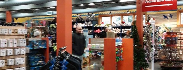 Oregon Coast Aquarium Gift Shop is one of Posti che sono piaciuti a Daviana.