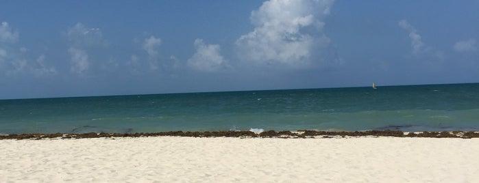 Secrets Playa Mujeres Golf & Spa Resort is one of Lieux qui ont plu à Alan.