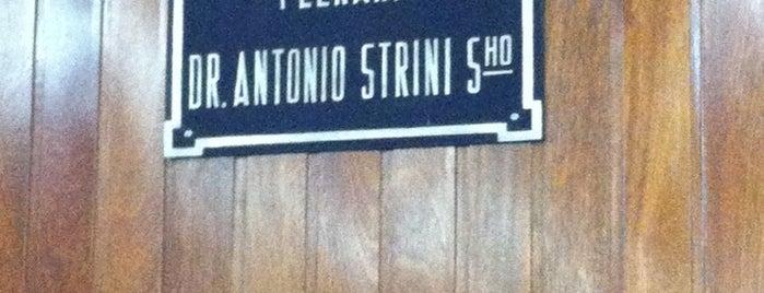 Plenario Antonio Strini Sobrinho is one of Locais curtidos por Eduardo.