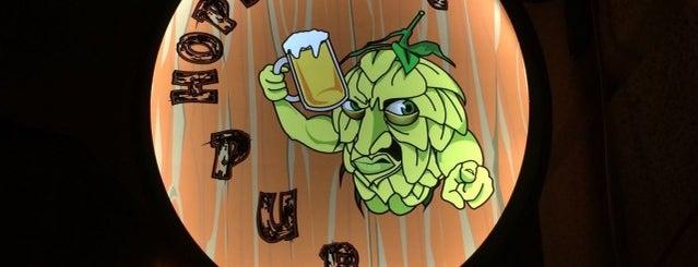 Hopfanatic Pub is one of Kézműves - Kis főzdés sörök.