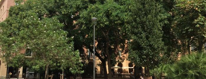 Oficina d'Atenció Ciutadana (OAC) del Districte de Ciutat Vella is one of Editar.