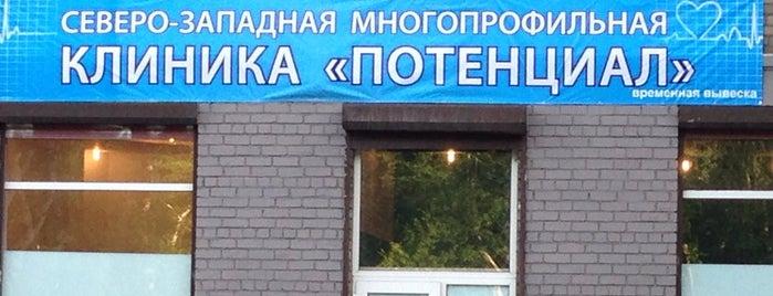 Беринга 20 is one of Tempat yang Disukai Pavel.