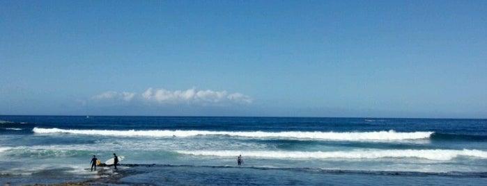 Oceano Atlantico is one of Tenerife South.