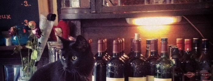 Cafe Van Beeren is one of Amsterdam bars with a cat.