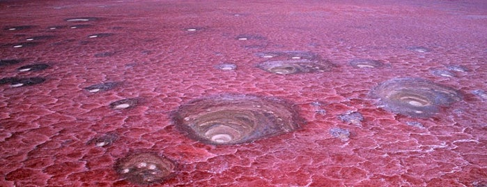 Lake Natron is one of Crazy Places.