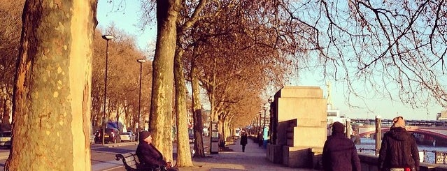 Victoria Embankment is one of The Great Trees of London.