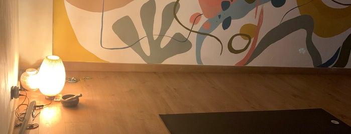 Yoga8 is one of Posti che sono piaciuti a Oguzhan.