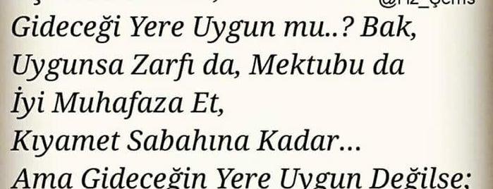 Balıkesir Özel Final Temel Lisesi is one of Aslı 🌟🌟🌟 : понравившиеся места.