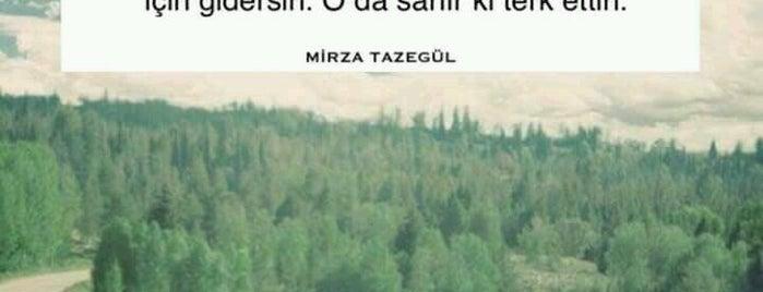 Nilüfer Sitesi is one of Guide to Bursa's best spots.