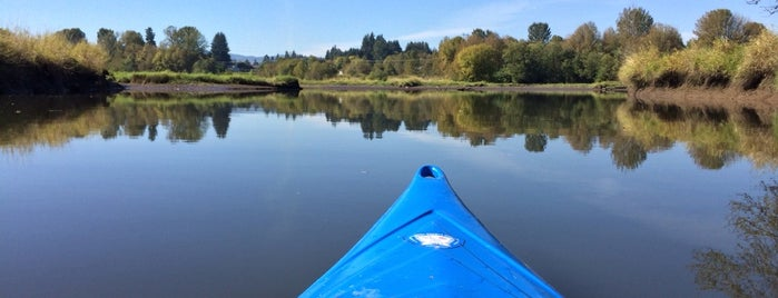 Scappoose Bay Kayaking is one of Portland (there's always tomorrow).