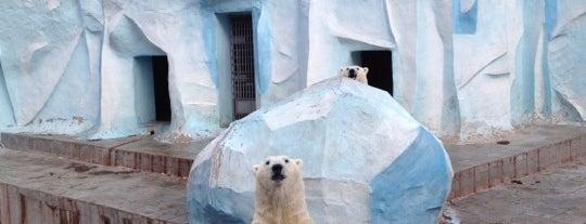 Новосибирский зоопарк is one of Go Ahead, Be A Tourist.