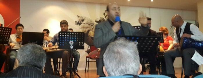 Kültür Ve Sosyal İşler Şube Müdürlüğü is one of Çalışma alanı.