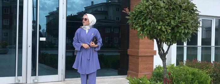 Vaditepe Hakim Savcı Lojmanları is one of Harika Yavuz TaSaRiM 님이 좋아한 장소.