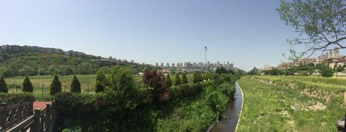 Bahçeşehir Park Gölet is one of Tempat yang Disukai Erkan.